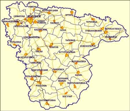 В Воронеже определили места- «заповедники» свободы собраний