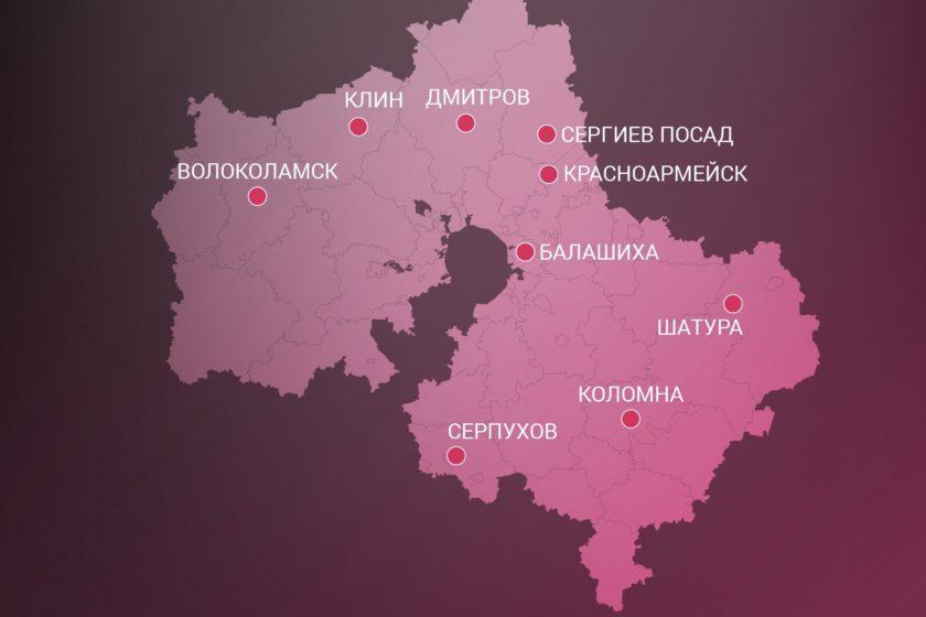 В девяти городах Подмосковья прошли митинги против мусорных полигонов