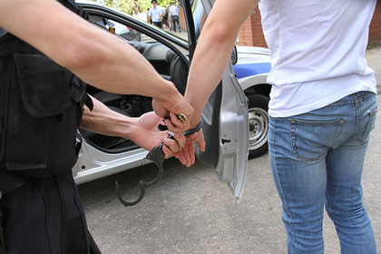 Сотрудники центра «Э» задержали четверых участников панк-фестиваля в Подмосковье