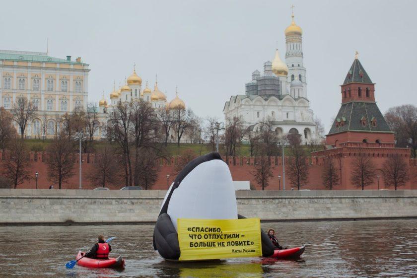 «Новая газета» сообщила о задержании своего фотокорреспондента в центре Москвы